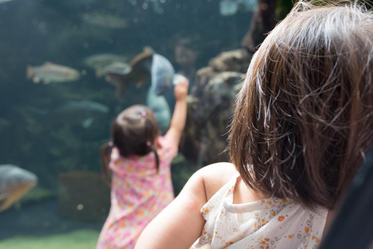 娘の様子@京都水族館-1