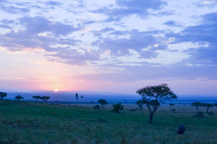 マサイマラの夜明け