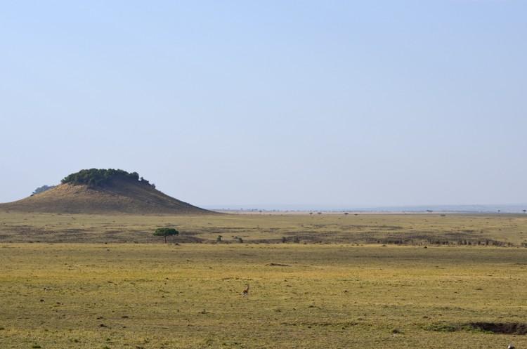 マサイマラの風景-3