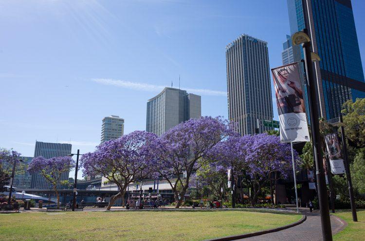 街歩きinシドニー-2