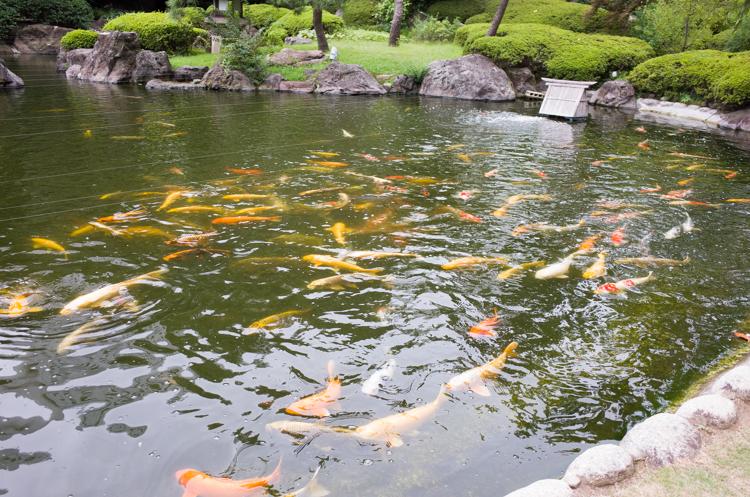日本庭園@ザ・プリンスさくらタワー東京-2